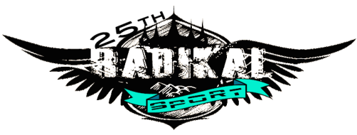logo 25 radikal